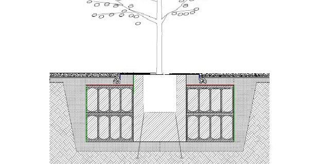 Tree Root Protection with Rainsmart Terravault